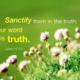 「1テモテ2:11-15の箇所は、新約聖書が、旧約聖書を正しく解釈し損なっているのです」という主張はどうでしょうか?