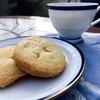 ケーキ屋さんより美味しいクッキーを作るためのコツとポイントとは?