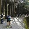 10月本宮山ハイキング【おかざき森のようちえん】