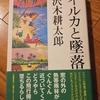 【文学】沢木耕太郎 「イルカと墜落」さすが沢木さんは持っている。珍道中の連続は、まさに「事実は小説より奇なり」。