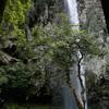 滝の写真 No.27 鳥取県 今滝