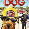 『ファイアー・ドッグ 消防犬デューイの大冒険』