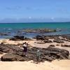 沖縄の人は海に行くのか?