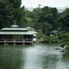 都民の日に雨露でしっとりとした清澄庭園をタムキューで撮ってきた【2016.10.1】