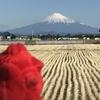 英会話ロボット★チャーピーのひと言英会話「タクシーで五合目まで行きました」@世界遺産 富士山の巻