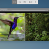 Windows 10で画面キャプチャーするキーボードショートカット