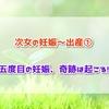 【回顧録】次女の妊娠~出産① 五度目の妊娠、奇跡は起こる!