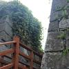 福岡城(日本百名城第85番)