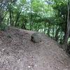 大野山のハイク(その1)登山道登り