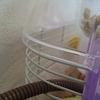 【ハムスター飼育】 寒くなってきたので、ゲージの中にマルチヒーターを敷きました。