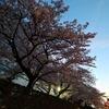 週報 03/25-04/06