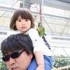 掛川花鳥園で娘のリアクションを愛でてきた
