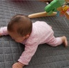 【成長記録】5ヶ月のハム子はアクティブなのです。