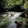 初めての川遊びは大成功【東京から2時間の清流・丹沢へ】親もハマった川の魅力