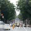 幕張のドライバーは心優しいのか・放送大学前の横断歩道は車がよく止まってくれる。