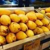 祝・新装開店!トンローのマンゴーやさん・メーワーリー【Mae Varee】@トンロー, バンコク