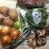 佐賀県 太良町からふるさと納税のお礼品が到着: 肥前の国のお野菜詰め合わせセット