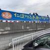 久々の高知県内レースになりました。仁淀川ふれあいマラソンin TOSA CITYレース振り返り(新設10kmの部)