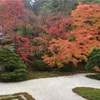京都・東山 紅葉