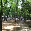 清水公園のキャンプ場はキャンプ、バーベキュー、マス釣りが楽しめる最高の場所だった