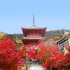 【写真複製・写真修復の専門店】神戸 太山寺の紅葉