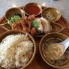 水道橋の海南鶏飯でシンガポール料理を食べてきた