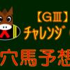 【GⅢ】チャレンジC 結果 回顧