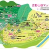 初めての吉野山での桜見レポート
