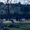 4月、春のプラハに帰ってきた!