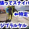 体を張ってスナイパーを特定する、野良さん神ジブラルタル出現チャンピオン!!! PS4 エーペックスレジェンズ