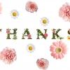 感謝!はてなブログproを導入して1年記念&ブログ1週年が過ぎてたよ