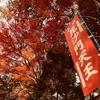 ご近所の紅葉。