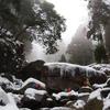 関西の雪山事情 part.2