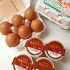 岩田養鶏場『赤玉大6個入り×2パックと黄金プリン4個』食べてみました