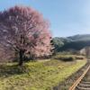 『50音マラソン』『れ』~電車の『レール』と後継者の『レール』~
