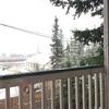 まだ雪降りますか?!そしてようやく始まりました。
