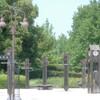 柏の葉公園の薔薇園へ