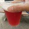 ベルギービールのヒューガルデンロゼを飲んでみた(じぃじとばぁばが遊びに来たpart 2)