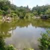 阪神間週末の釣り2018/08/03