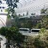 シンガポールのチャンギ空港の新施設「Jewel(ジュエル)」を内覧したので感想などを書いてみる