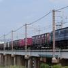 第617列車 「 ハコ釜スターダム!来阪したPF2101を狙う 」