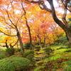 美しき日本の47都道府県を楽しむ