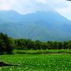 北海道旅行 day3 part.1 :来運神社(パワースポット・斜里岳の湧水) / 知床五湖(ルート・ガイドツアー)/ 道の駅 うとろ シリエトク
