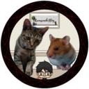 ハム猫ブログ