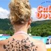 【新曲】Taylor Swift(テイラースウィフト)/ You Need To Calm Down