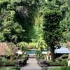 バリ旅行記①~ウブドの熱帯雨林に癒された、バグースジャティ リゾート