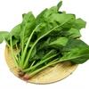 【シュウ酸について】ほうれん草を食べよう!【飲食店勤務の36歳フリーターが健康を考える】