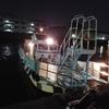 【大阪湾波止釣り,動画】チヌ釣り大会IN大阪北港たまや渡船