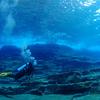 ♪透明度45m以上の真っ青な慶良間諸島ファンダイビング♪〜沖縄ダイビングPADI那覇〜