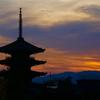 京都マラソン2019ダメでした(TT)